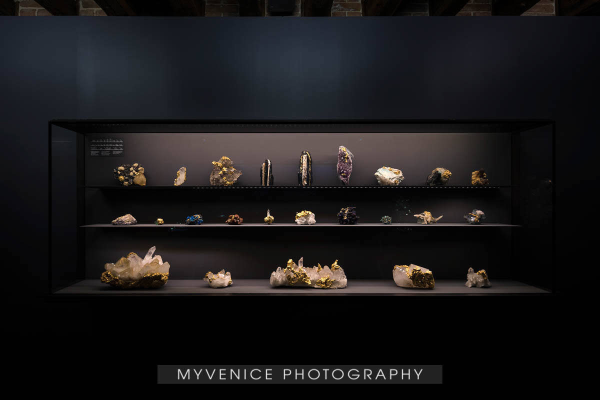 Myvenicephotography46
